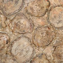 PETRIFIED WOOD BEIGE